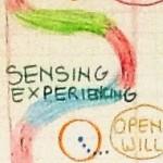 sensing x